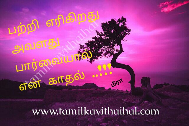 Cute romantic kadhal kavithai for husbend and wife love meera poem paarvai vili facebook images