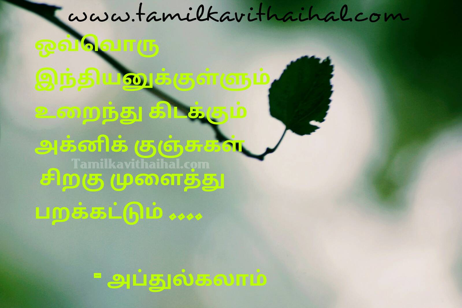 Dr abj abdhul kalam saying about indian akini sirakukal quotes for success thathuvam image download