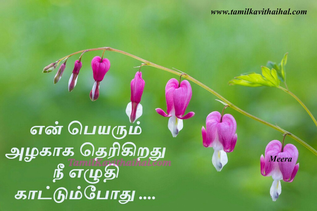 En peyar alagu nee eluthum podhu tamil cute love kavithai romantic feel for boy meera poem facebook images