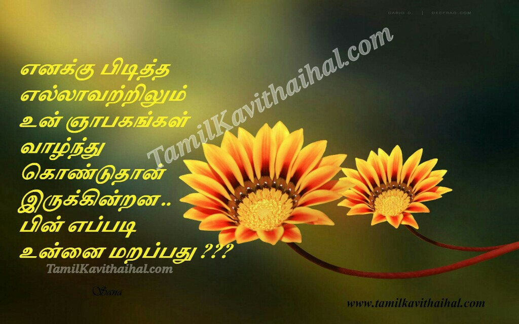Enaku piditha ellam un nyapagam marapathu eppadi sogam thanimai very sad love quotes kavithaigal by sana