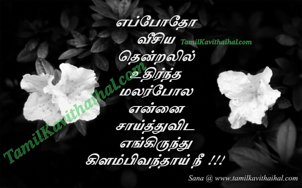 Eppotho veesya thendral uthirntha poo nan enkirunthu vandhai nee sana love failure quotes kanneer kavithaigal for whatsapp facebook