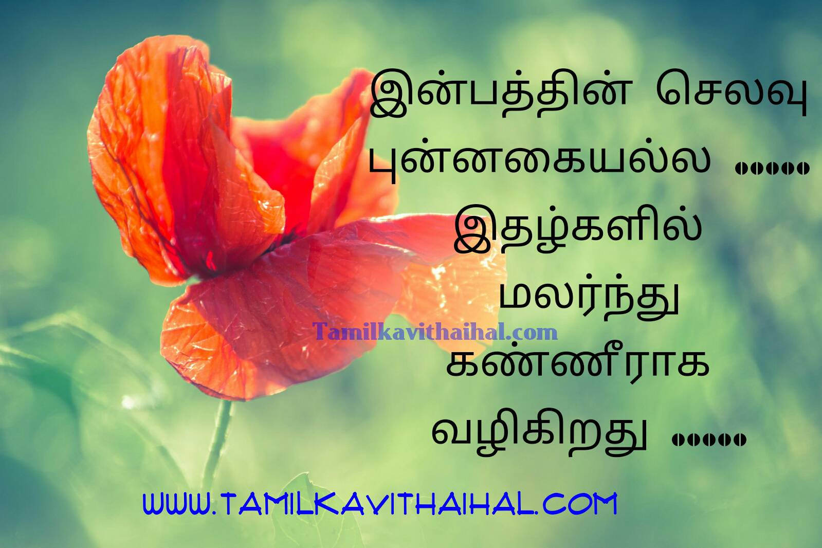 Famous tamil quotes about happy confidence valuable thathuvam in tamilfont facebook pic fullhd image