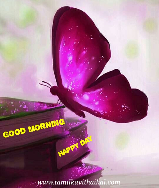 Good morning status in tamil happy day wishes whatsapp download
