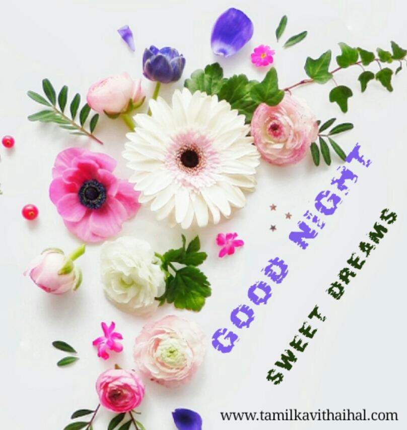 Gudngt wishes in tamil iravu vanakkam whatsapp image