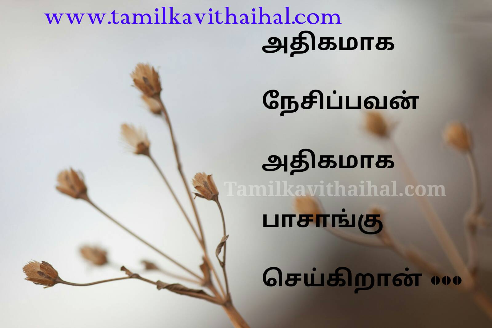 Heart Broken And Hurt Feeling Quotes In Tamil Anpu Nesam Poi Love