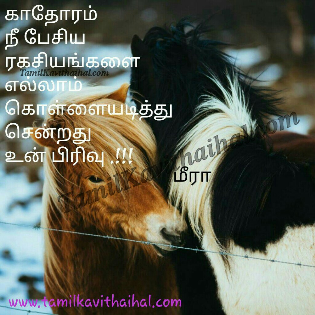 Heart paining kavithai about pirivu rakasiyam soham vali ranam in tamil language meera poem whatsapp images download