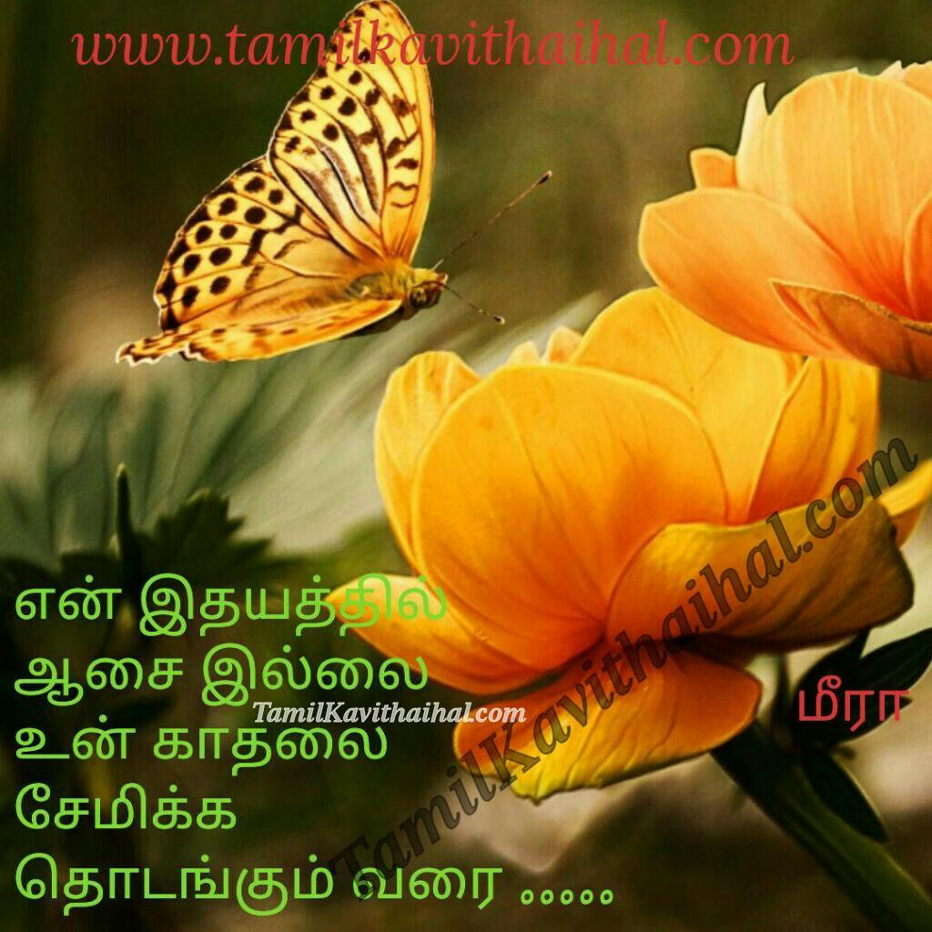 Idhayam aasai kadhal illai unnai kadhalika thodankum varai meera kavithaigal and love quotes in tamil
