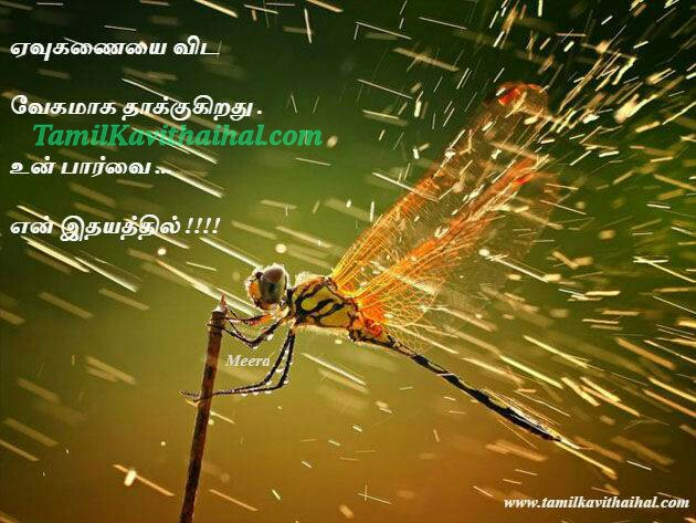 Idhayam love tamil kavithai evukanai butterfly image boy