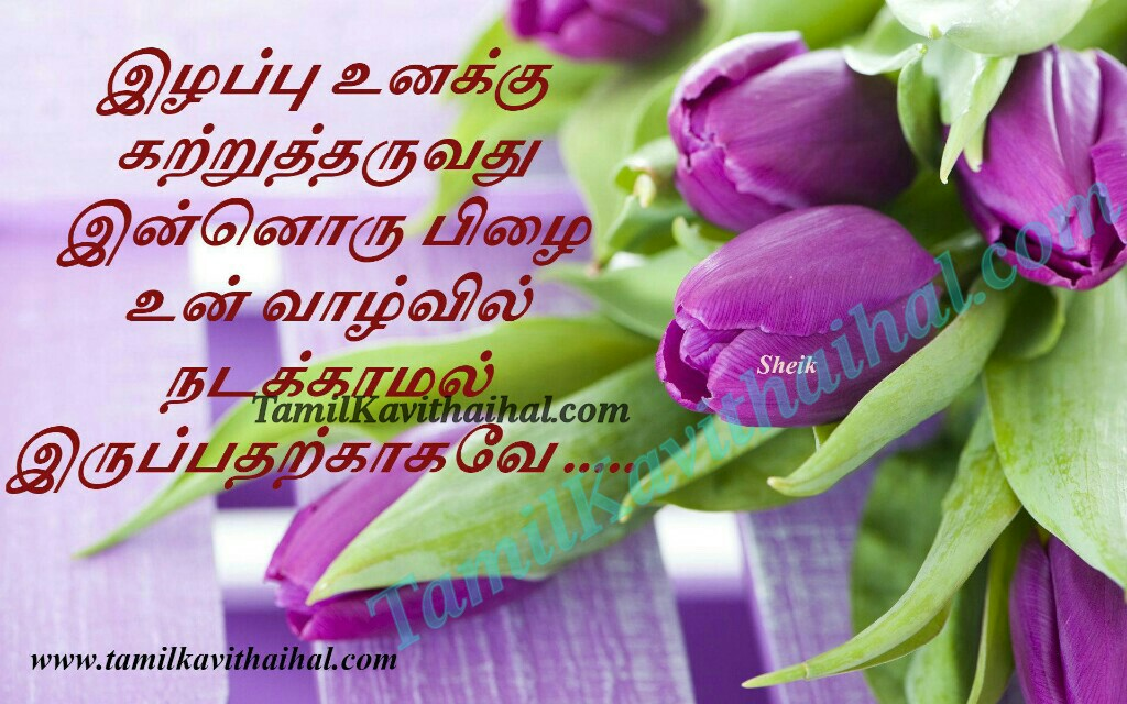 Ilapu pilai katru tharuvathu mistakes in life humans tamil quotes valkai thathuvam