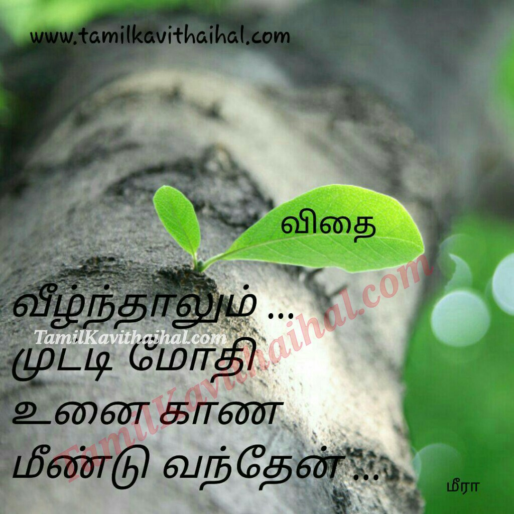 Iyarkkai Kavithai In Tamil Language Positive Quotes Life Meera Poems