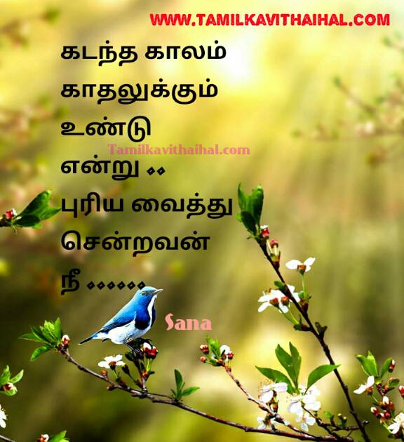 Kadhal Aaruthal Words Tamil Font Love Failure Feeling Sana Kavithai