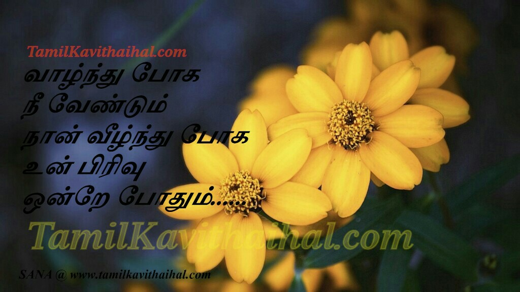 Kadhal kavithai tamil valkai pirivu feel for boy kanneer kavithai sogam sana images download