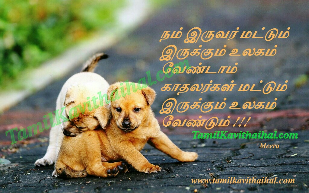 Kadhal kavithaigal in tamil with pictures meera lovers world ulagam boy feel girl facebook whatsapp dp status