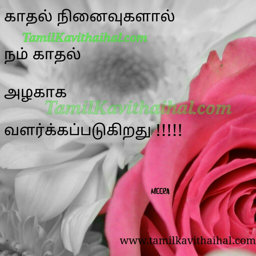 Kadhal ninaivugal en alagai valarkapadukirathu heart touching kavithai tamil poems meera for facebook