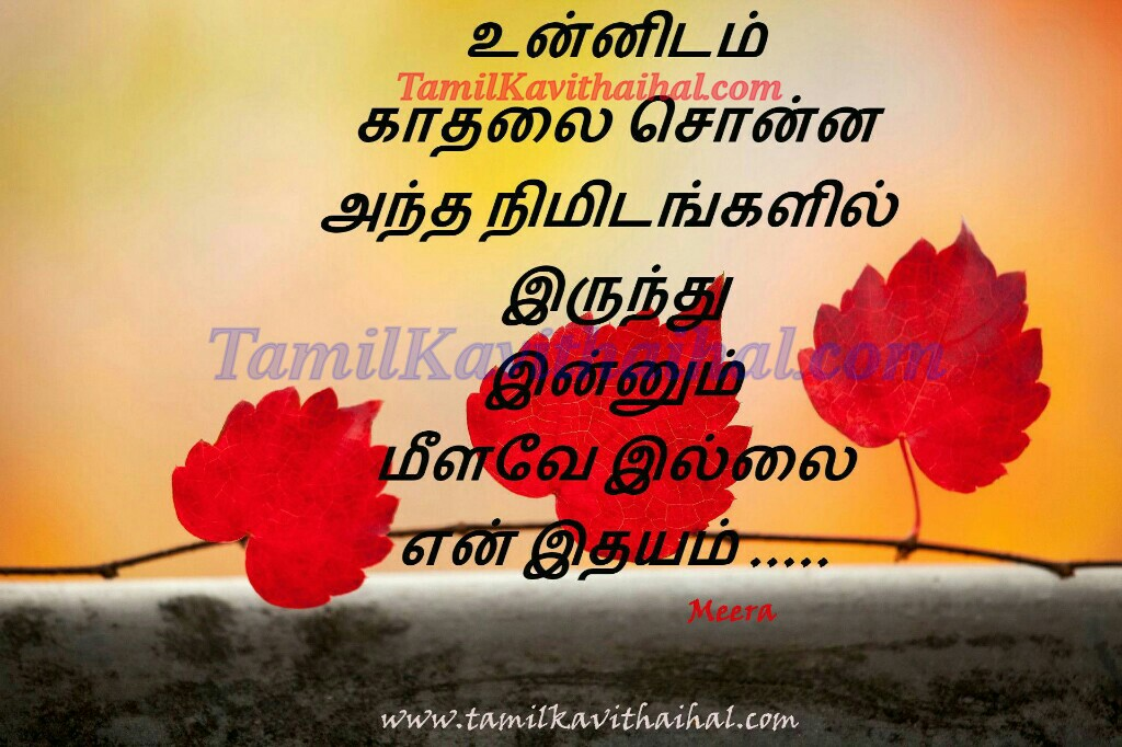 Love proposal in tamil words
