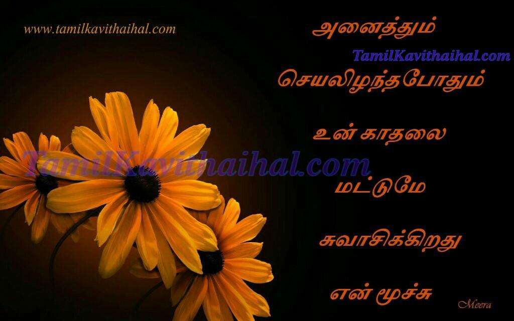 Kadhal swasam nee pennae kanneer kavithai meera tamil poems facebook whatsapp dp status