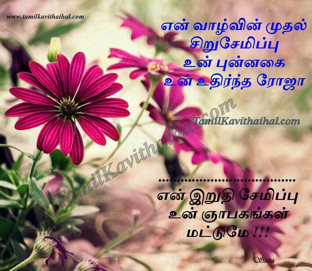 Kadhal valvu muthal siru semippu punnakai roja ninaivukal love kavithai in tamil language sana images download
