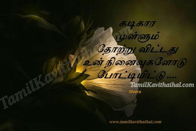 Kadikaram mullum thotru vitadhu ninaivukal tamil kavithai about love sad boy feelings meera facebook images