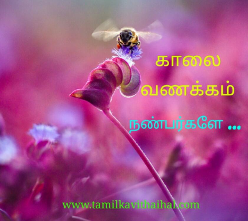 Kalai vanakkam kavithaigal in tamil best gud mrg wish images