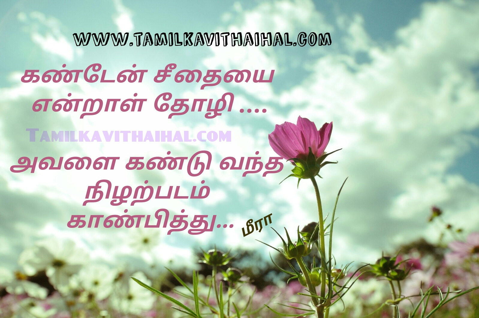 Kanden seethai photo love boys feeling true affection kadhal kavithai in tmail meera poem whatsapp images