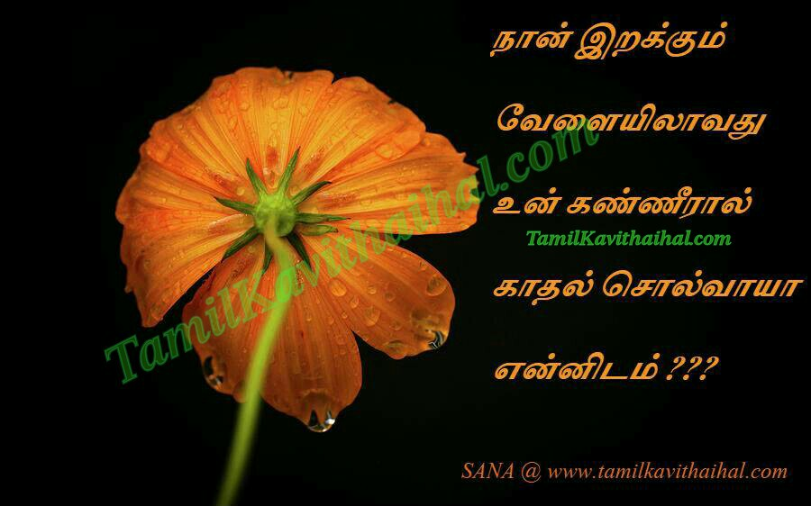 Kathal vali kavithai in tamil maranam kadhal solvaya boy girl feel sana images download for whatsapp facebook