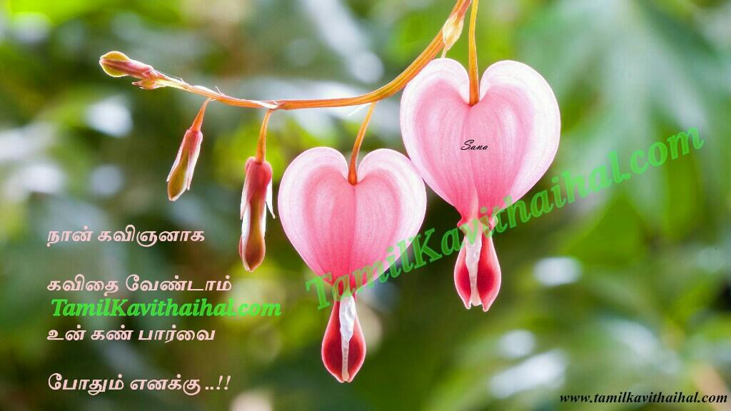 Kavingan kan kadhal mudhal parvai mudhal mutham tamil kavithai images download