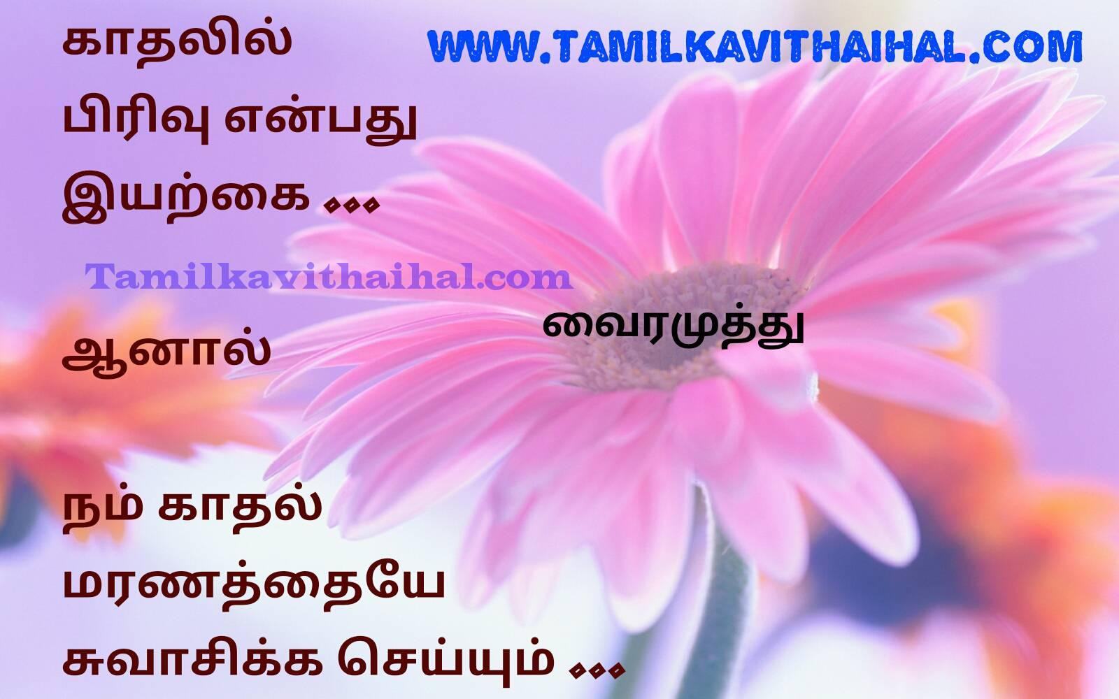 Kaviperarasu vairamuthu kavithaigal in tamil beautiful lovers feel maranam iyarkkai pirivu hd image download