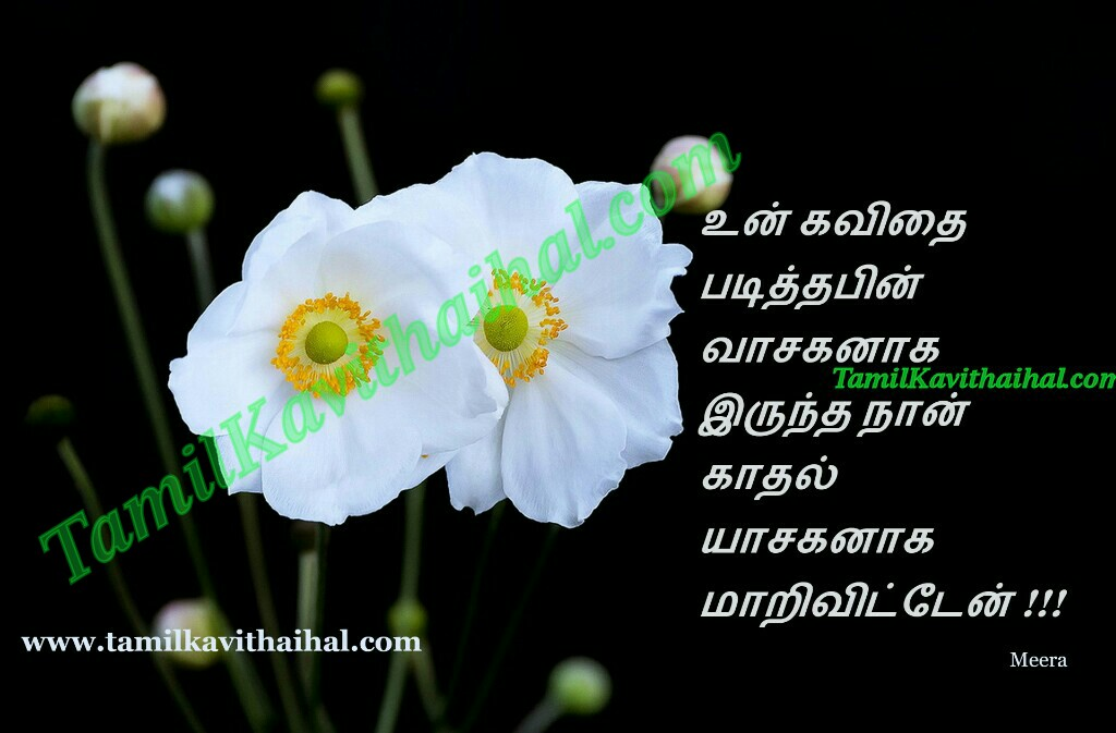 Kavithai in tamil about love boy feel vasagan meera images facebook download