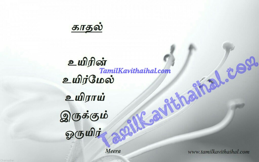 Kavithaigal in tamil about love uyir kadhal kavithai meera poems messages quotes free images download