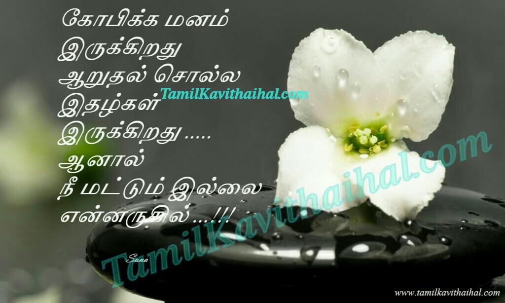 Kopam aruthal idhal manam nee illai arugil sogam pirivu tamil kavithai kanneer sana rose wallpaper download