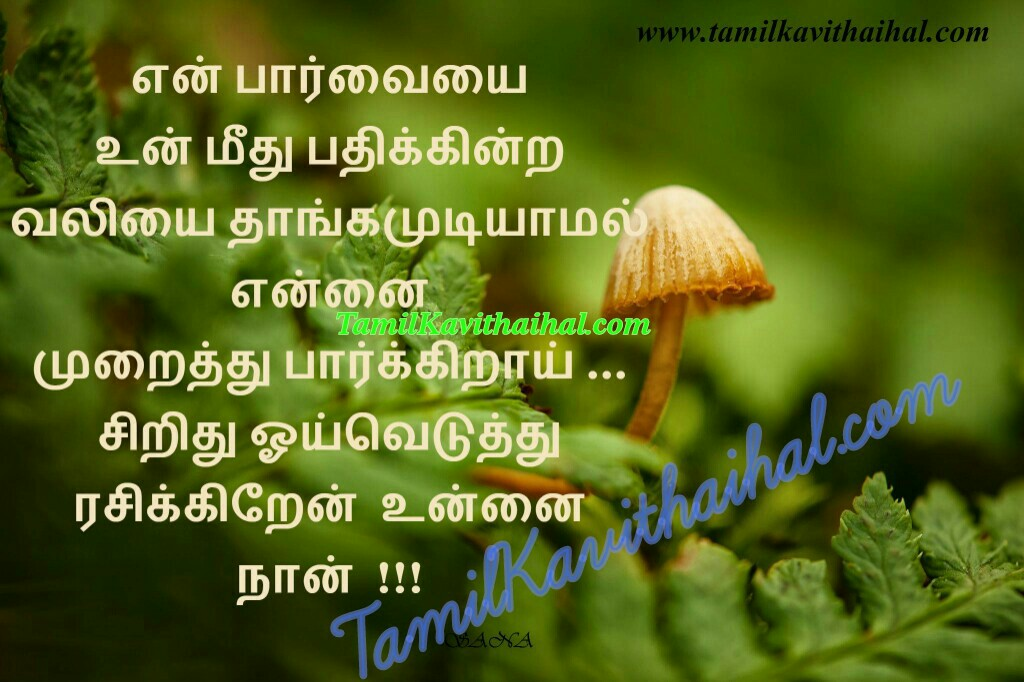 Love at first sight love and love only paarvai muraithu parkirai tamil kadhal kavithaigal and poems by sana