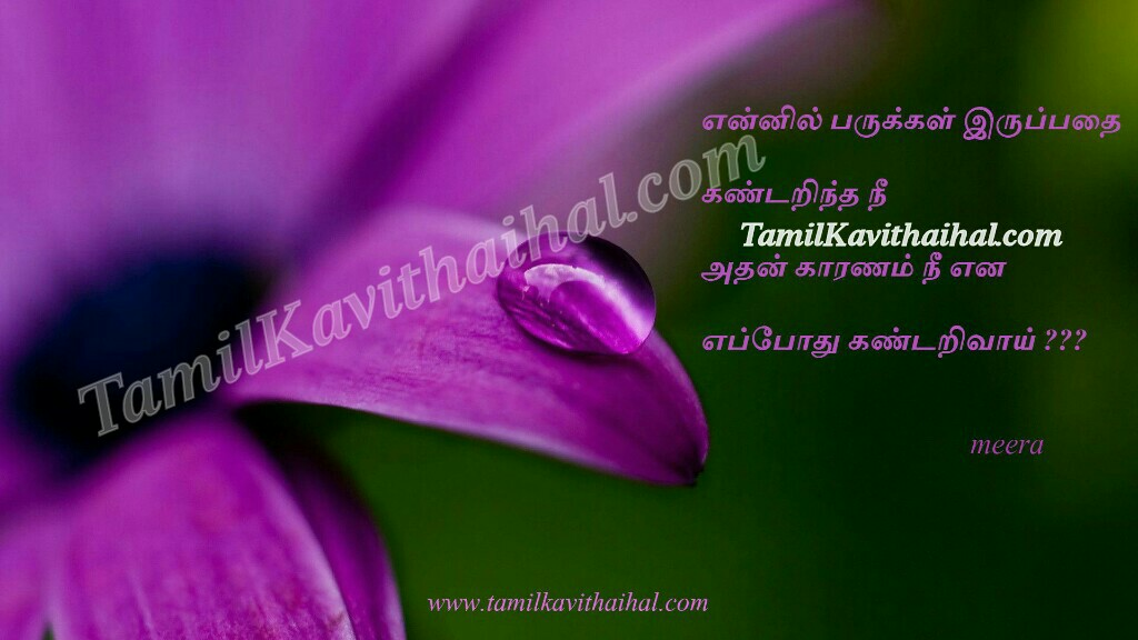 Love cute face girl tamil kavithaihal kavithai quotes