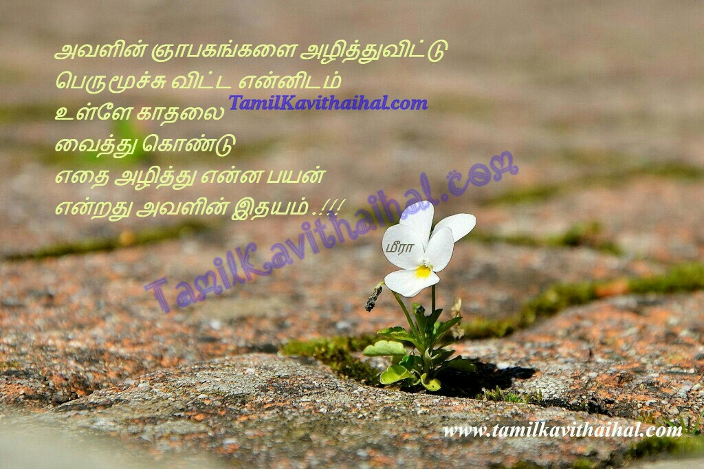 Love failure heart touching messages in tamil kadhal tholvi meera ninaivugal idhayam moochu quotes images downloads sogam thanimai