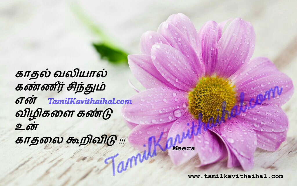 Love failure heart touching messages in tamil kadhal tholvi meera vali love me please quotes images downloads pirivu