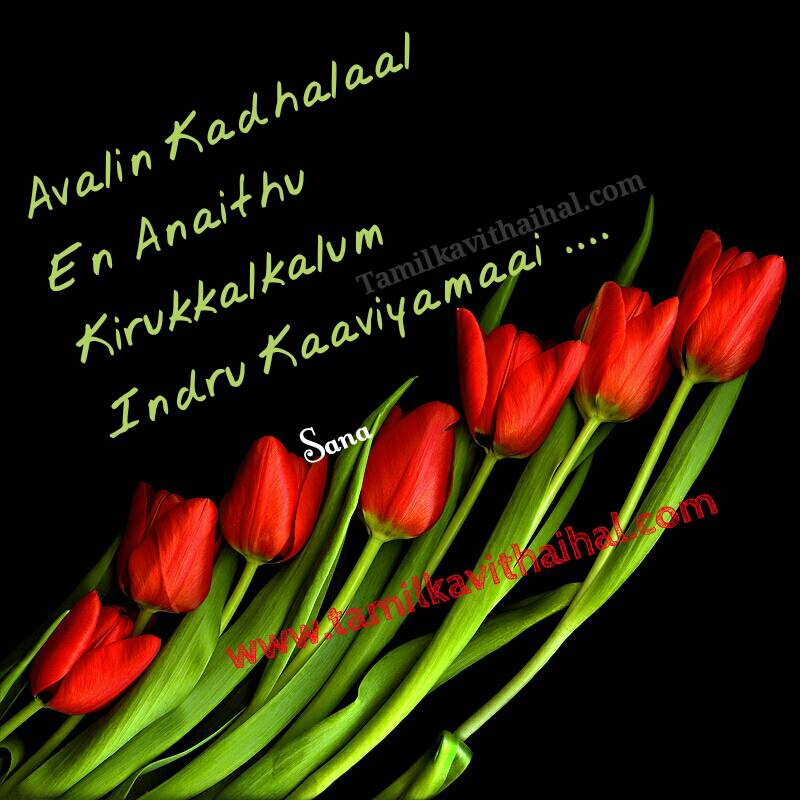 Love kavithai for girl english thanglish avalin kadhalalal en eluthukal ellam kaaviyam