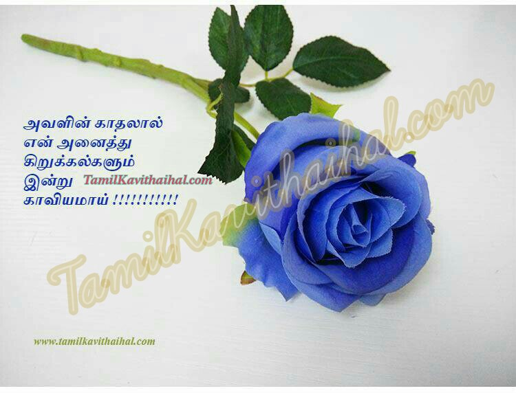 Love tamil rose blue kadhal quotes sad