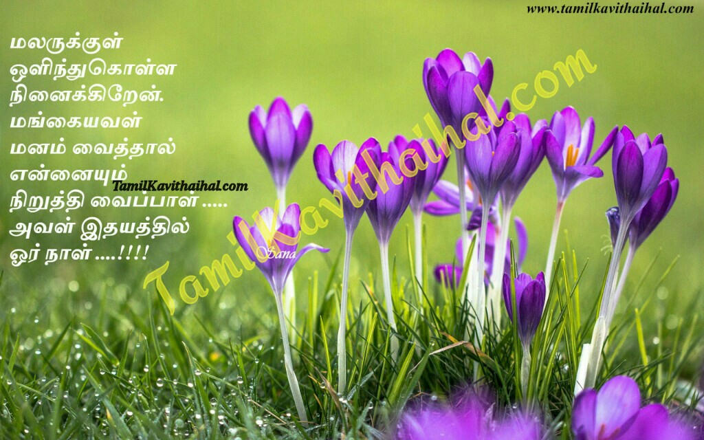 Malar mangai manam idhayam tamil kadhal kavithai images download