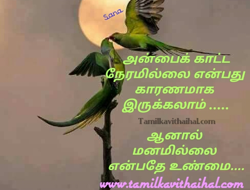 Most beautiful words for love anbu quotes valkkai thathuvam life events sana poem facebook image wallpapper