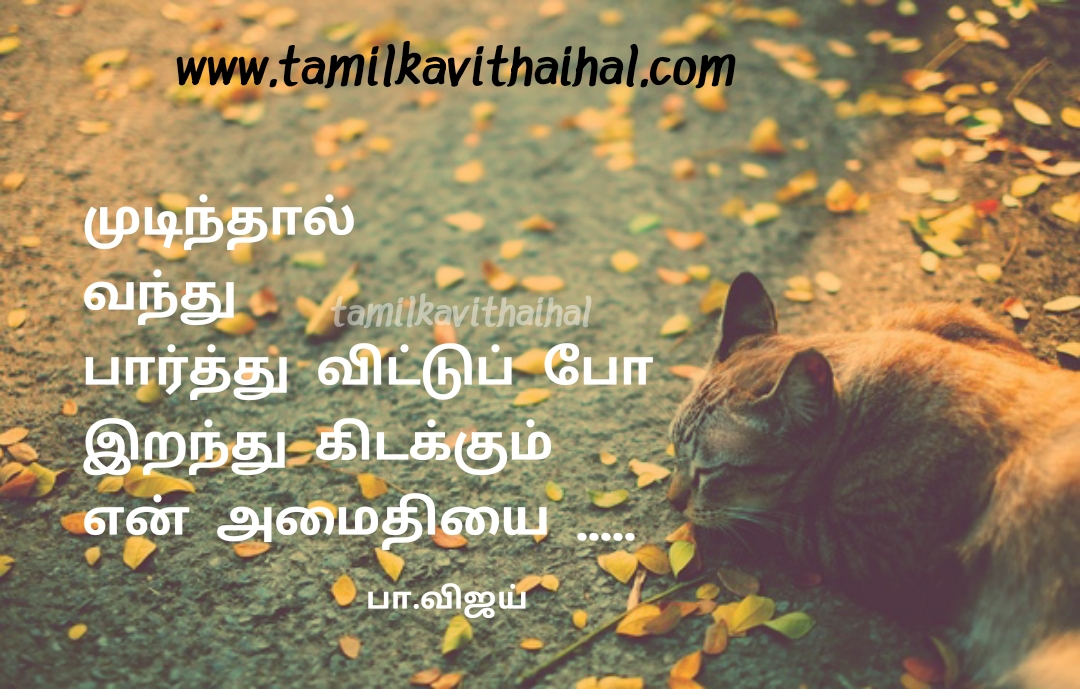 Mudinthaal vandhu paar iranthu kidakkum amaithi kavithai pa vijay best love quotes