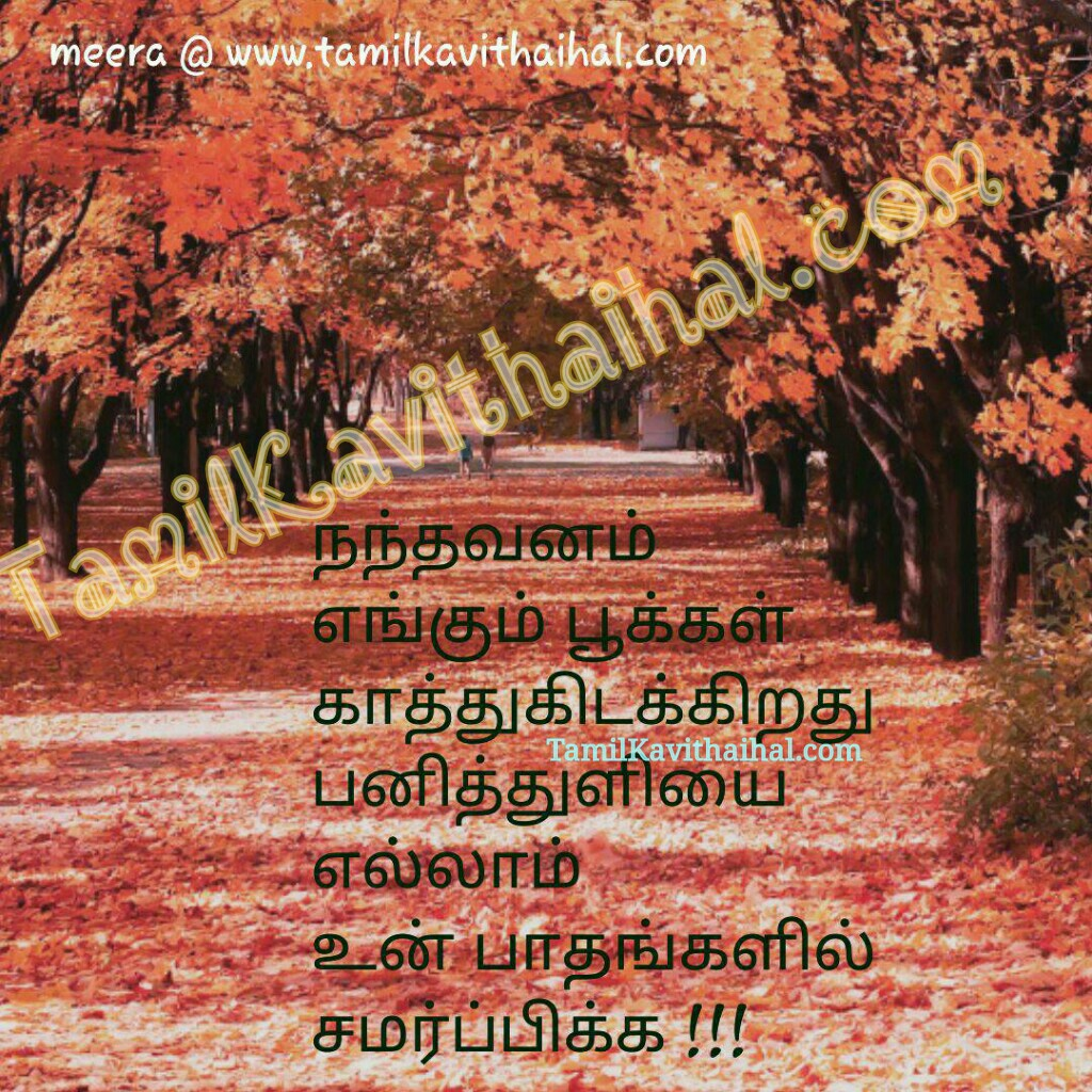 Nandavanam pookal pani thuli patham samarpanam boy feel girl love tamil kavithai meera images