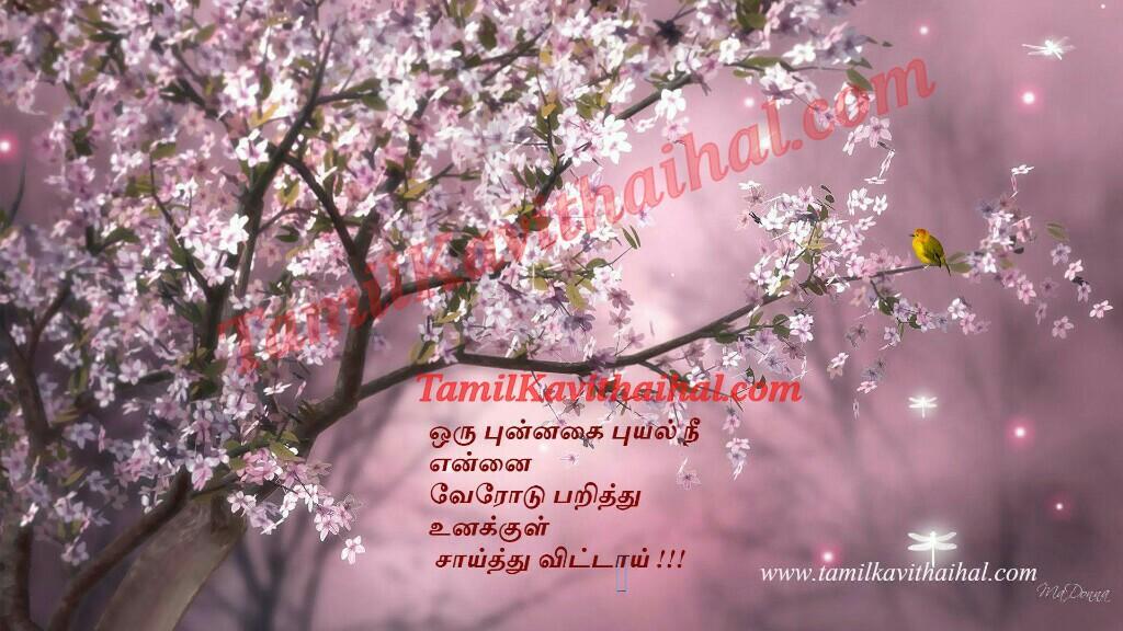Nature flower love kadhal kavithai bird tamil