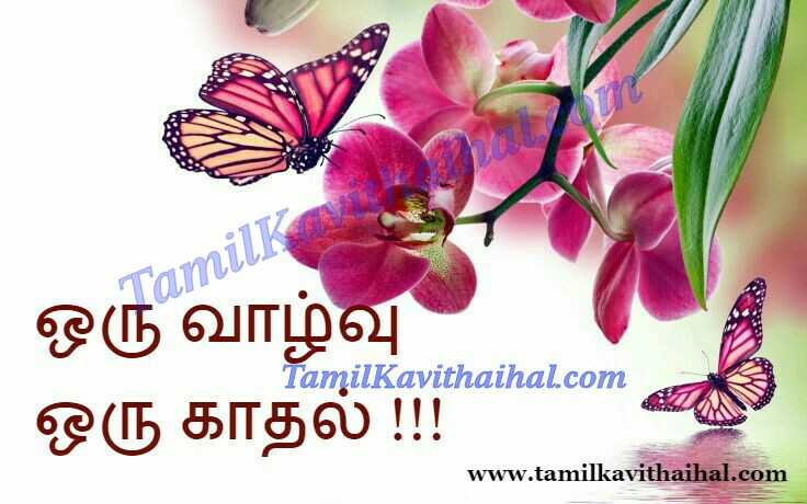 Nice quotes on tamil valkai life inspiration viruppam love kadhal images download