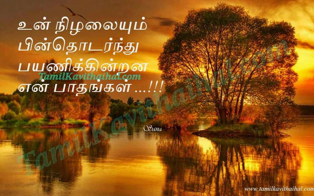 Nilal pathai payanam tamil kadhal kavithai nature sana poems quotes images download