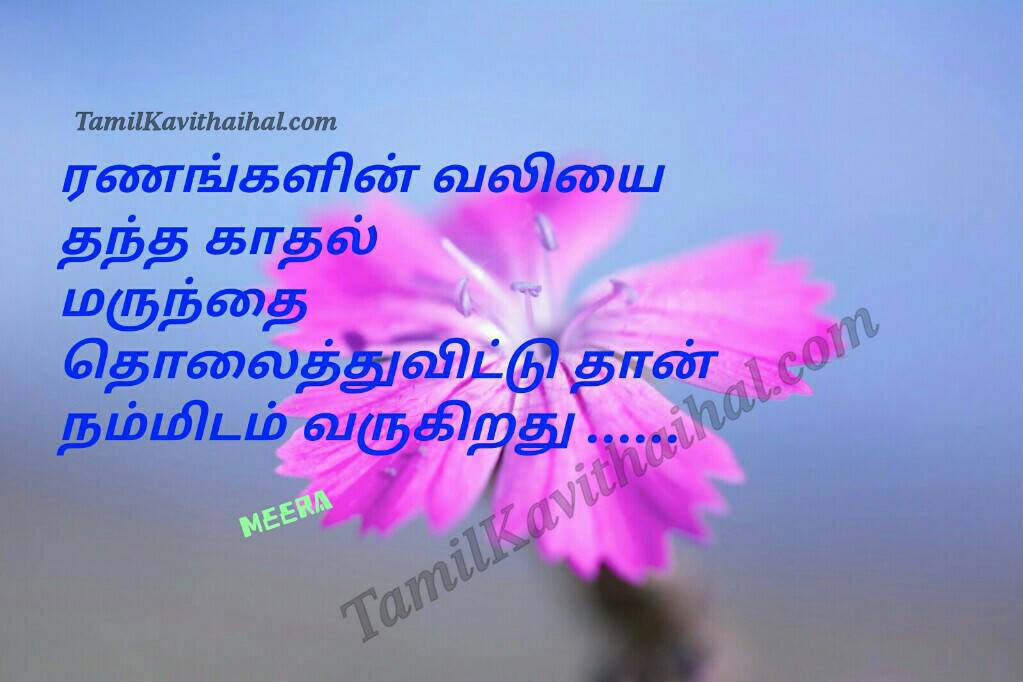 No cure for love pain meera