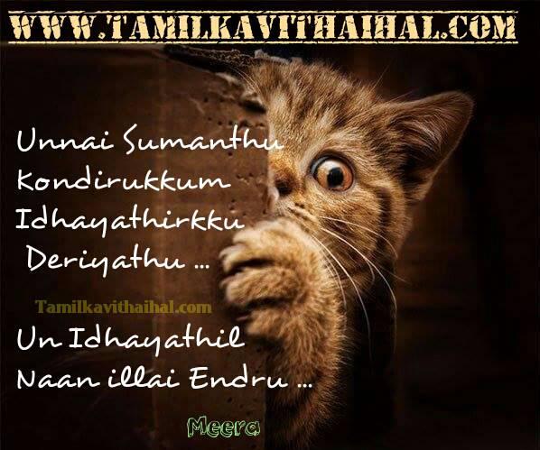 Painful kavithai english words love failure thanglish kavithai sana cat images
