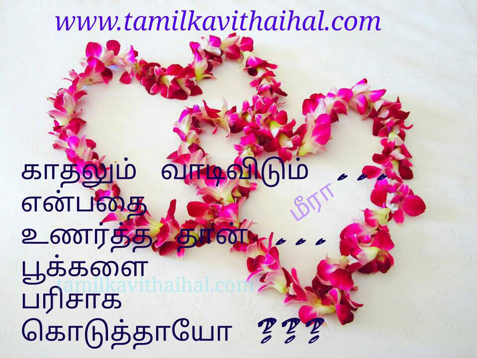 Painful One Sided Love Failure Tamil Kavifemale Mind Feel Alugai Kadhal Vaadi Vidum Pookal Parisu Nee Whatsapp Dp Pic