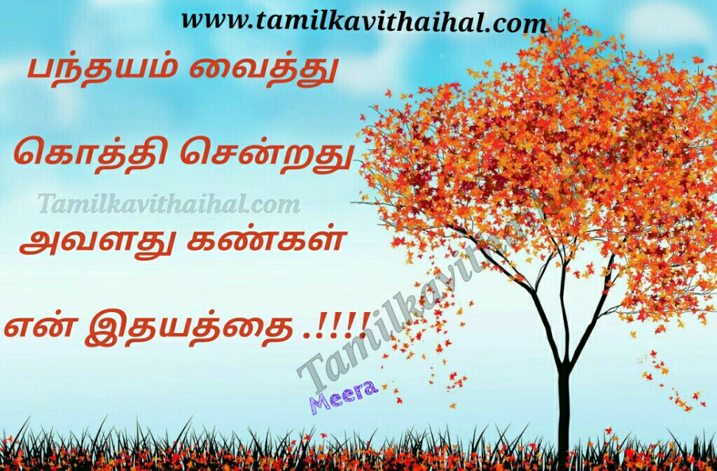 Pandhayam vaithu kankal eye kavithai for love idhayam tamil kadhal kavithai meera poem whatsapp images download