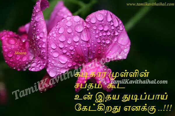 Poo flower kadikaram mul saptham idhayam tamil kadhal kavithai quotes poems meera images download