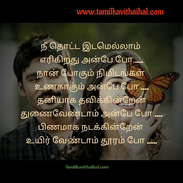 Poo nee poo song lyrics download dhanush and shuruti hasan three movie images