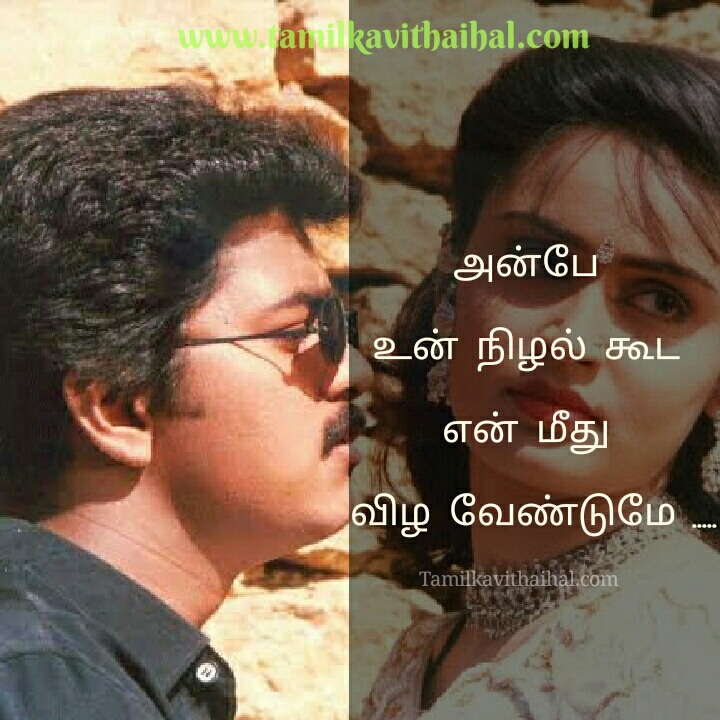 Pooja va song lyrics download from piriyamudan movie vijay koushalya images